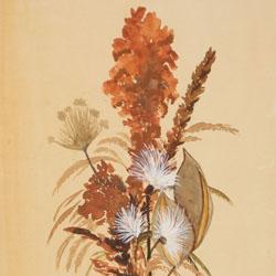 Autumn Bouquet Note Card Set